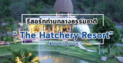 The Hatchery Resort