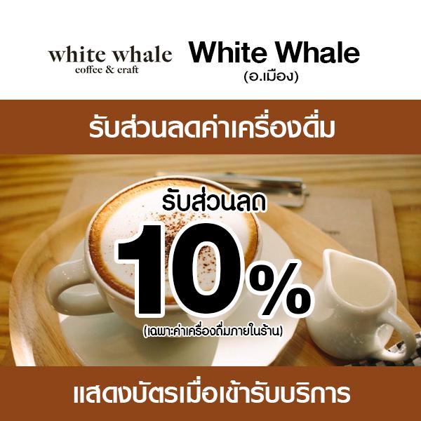 06-white-whale white whale coffee & craft ร้านกาแฟอินดี้
