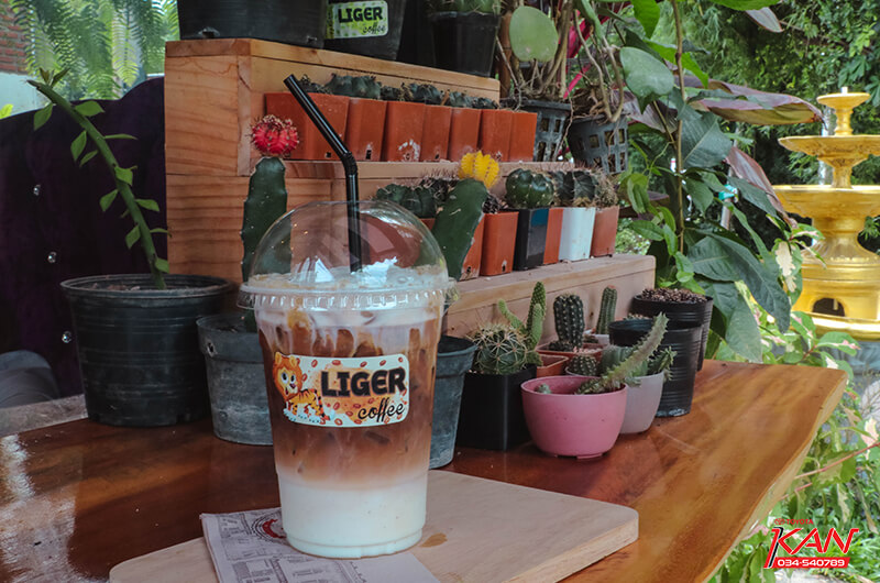 11 Liger coffee คาเฟ่กลางป่ากับบาริสต้าอารมณ์ดี
